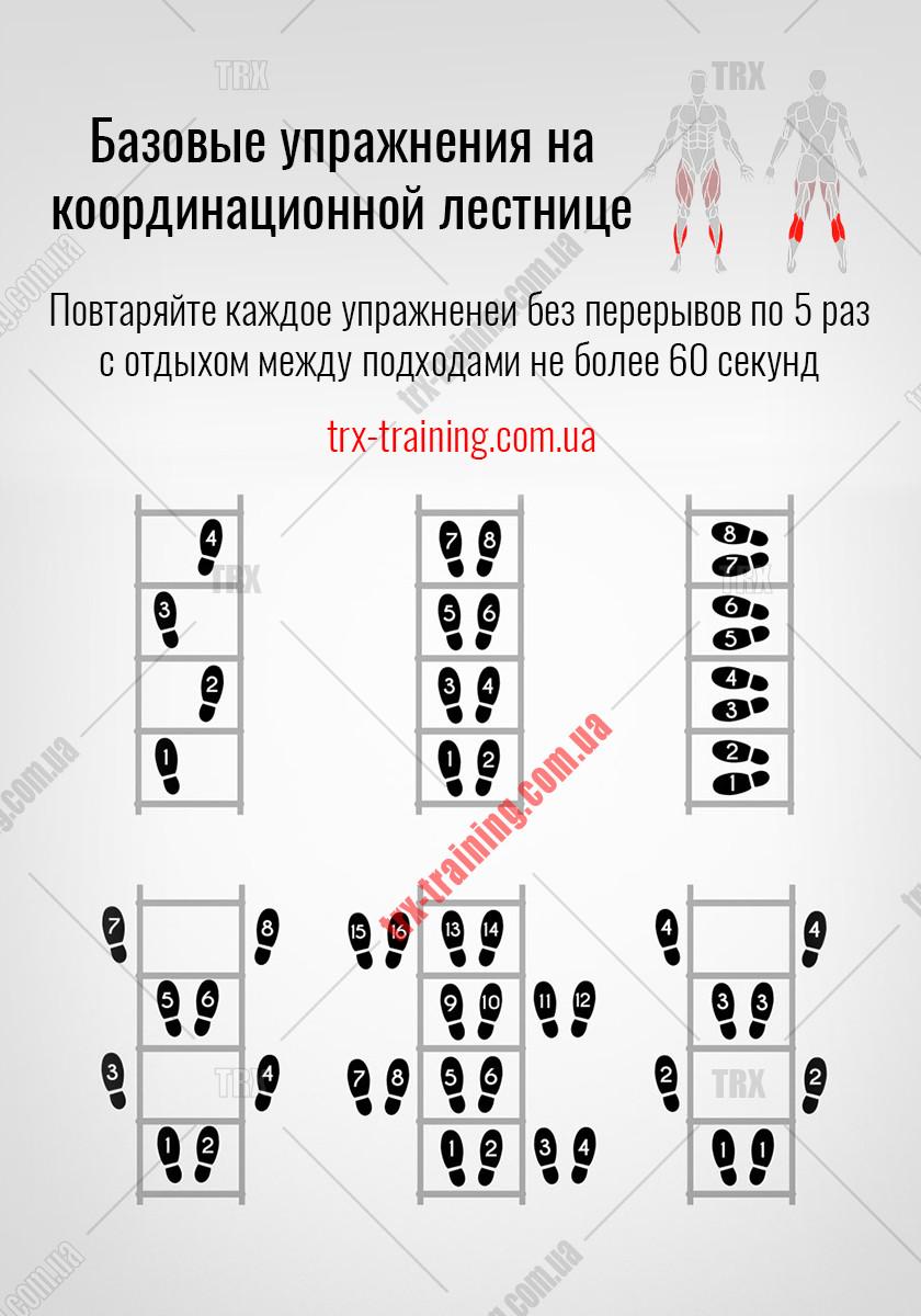 upragneniya-s-koordinatsionnoi-lestnitcei-01.jpg