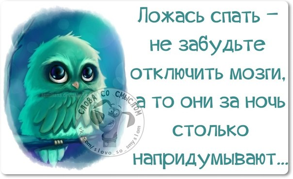 http://ne-kurim.ru/forum/attachments/vlbzrkmfg4k-jpg.167213/