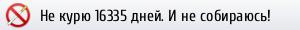 https://ne-kurim.ru/ncounter/237286-13.png
