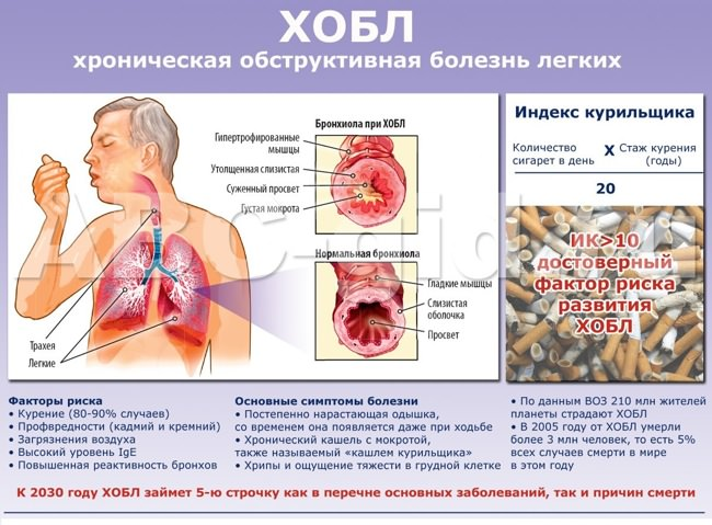 Вывод о вреде курения