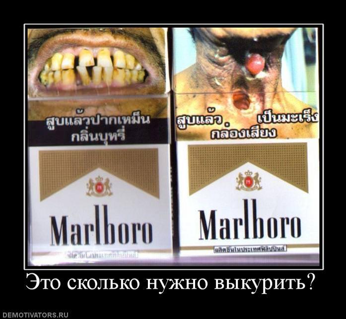 оптические смешные фото хочется покурить признался, что
