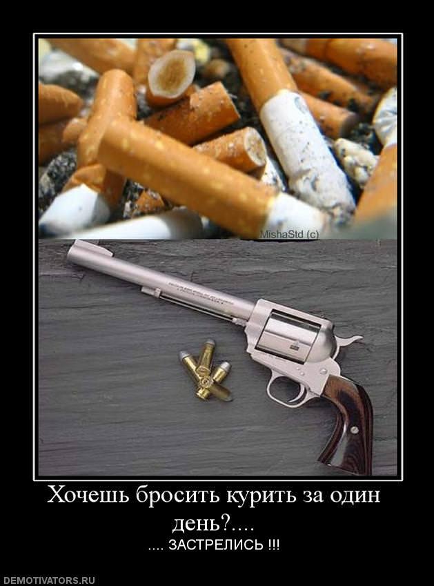 смешные фото хочется покурить хозяйка