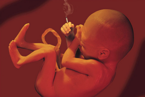 Влияние никотина на плод во время беременности реферат 3217
