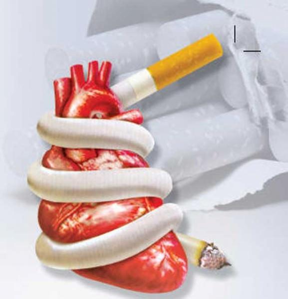 Курение и сердечно-сосудистая система: вред и последствия курения