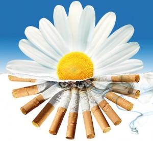 Как можно бросить курить в домашних условиях народными средствами