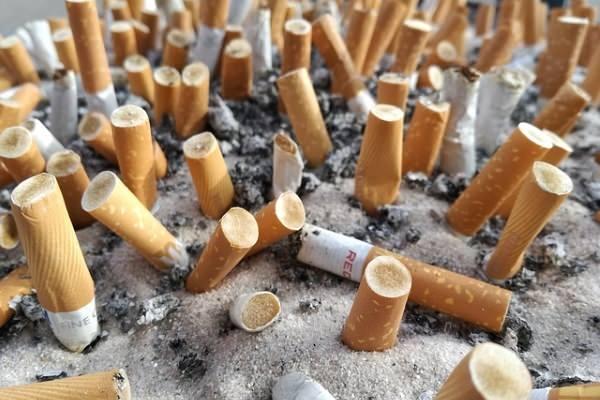 Через сколько можно курить после пломбирования зуба